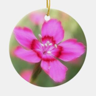 Dianthus Deltoides Flowers  - Close Up Ceramic Ornament