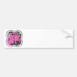 Dianthus Perennial Bumper Sticker