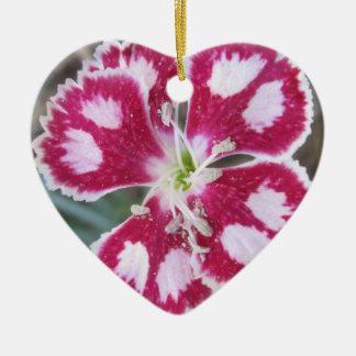 Dianthus Red White Flower Ceramic Ornament