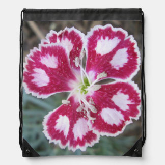 Dianthus Red White Flower Cinch Bags