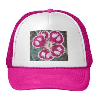 Dianthus Red White Flower Mesh Hat