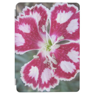 Dianthus Red White Flower iPad Air Cover