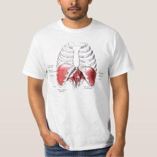 Diaphragm drawing tshirt