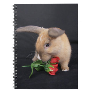 Diario del cuaderno del conejo de conejito de MHRR