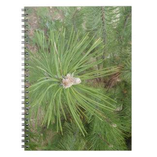 Diario largo del cuaderno del pino de Needled