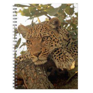 Diario pensativo del leopardo libreta