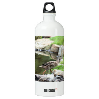 Diary of a Mad Brown Duck Aluminum Water Bottle