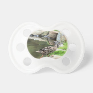 Diary of a Mad Brown Duck Pacifiers