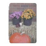 Días de fiesta del otoño de la caída cover de iPad mini