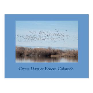 Días de la grúa en Eckert, Colorado Tarjetas Postales