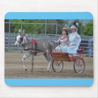 Días de la mula de Montana Alfombrillas De Raton