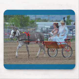 Días de la mula de Montana Tapete De Ratón