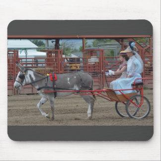Días de la mula de Montana Tapetes De Raton