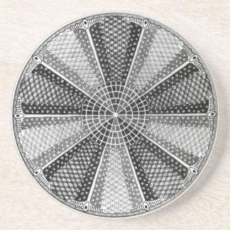 Diatom 13 Ernst Haeckel Fine Art Drink Coaster