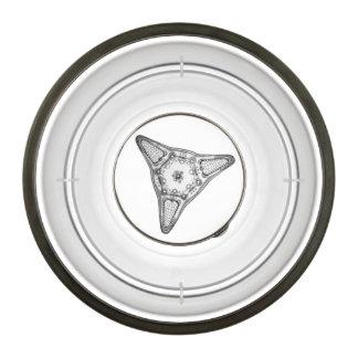 Diatom Pet Bowl
