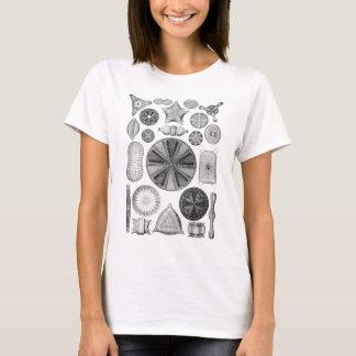 Diatoms T-Shirt