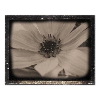 Diatrope Side sunflower Card