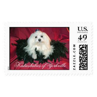 Di'Boni's Mighty Michaelangelo 6/08/06, Katiesb... Postage Stamps