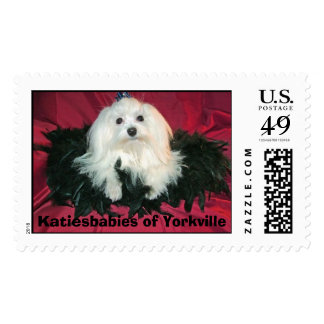 Di'Boni's Mighty Michaelangelo (Mikey) Postage Stamp