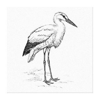 Dibujo animado blanco y negro del pájaro de la lona envuelta para galerias
