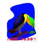 Dibujo animado colorido Toucan Tarjetas Postales