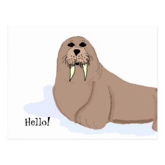 Dibujo animado de la morsa tarjetas postales