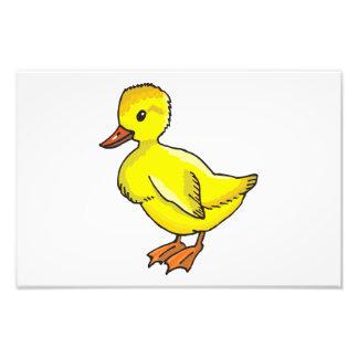 Dibujo animado del pato del bebé impresiones fotográficas