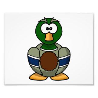 Dibujo animado del pato del pato silvestre fotografía