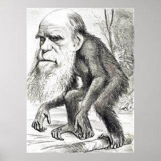 Dibujo animado editorial de Charles Darwin 1871 Póster