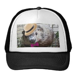 ¡Dibujo animado lindo de la marmota! Gorra