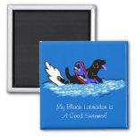 Dibujo animado negro de Swimmig Labrador Iman