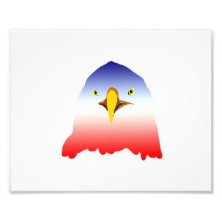 dibujo animado rojo blanco azul del águila foto