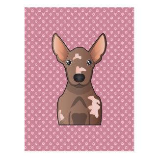 Dibujo animado sin pelo mexicano del perro postal
