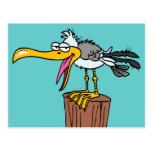 dibujo animado tonto de la gaviota tarjetas postales