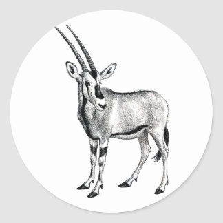 Dibujo animal del cuerno del diente del antílope d pegatinas redondas