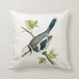 Dibujo azul de los pájaros del pájaro cantante del almohadas
