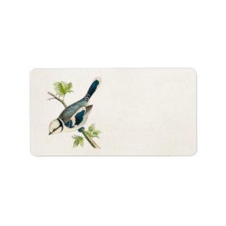 Dibujo azul de los pájaros del pájaro cantante del etiqueta de dirección