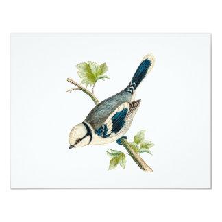 """Dibujo azul de los pájaros del pájaro cantante del invitación 4.25"""" x 5.5"""""""
