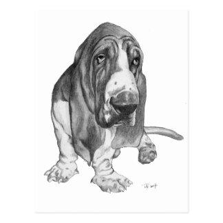 Dibujo de Basset Hound Tarjeta Postal