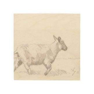 dibujo de bosquejo de las ovejas que camina en la  cuadro de madera