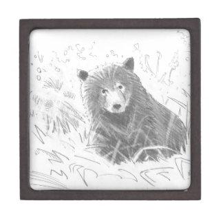 Dibujo de Cub de oso grizzly Caja De Joyas De Calidad