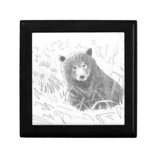 Dibujo de Cub de oso grizzly Cajas De Joyas