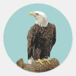 Dibujo de Eagle calvo Etiqueta Redonda