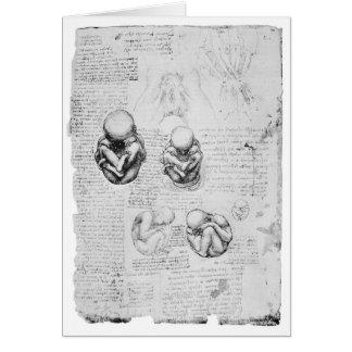 Dibujo de la anatomía del vintage de un feto tarjeta de felicitación