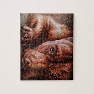 Dibujo de la cara del pitbull de Brown del perro Puzzle Con Fotos
