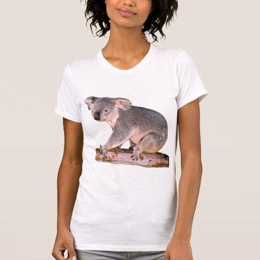 Dibujo de la koala camiseta