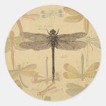 Dibujo de la libélula del vintage pegatina redonda
