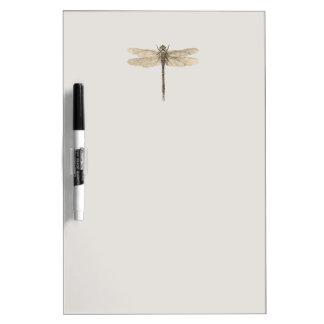 Dibujo de la libélula del vintage pizarras blancas de calidad