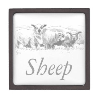 Dibujo de la multitud de las ovejas caja de recuerdo de calidad