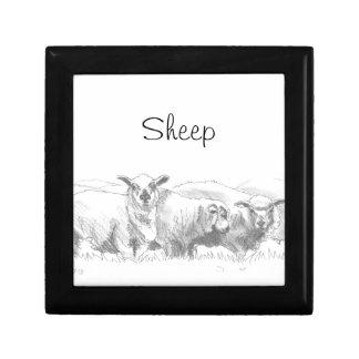 Dibujo de la multitud de las ovejas cajas de recuerdo